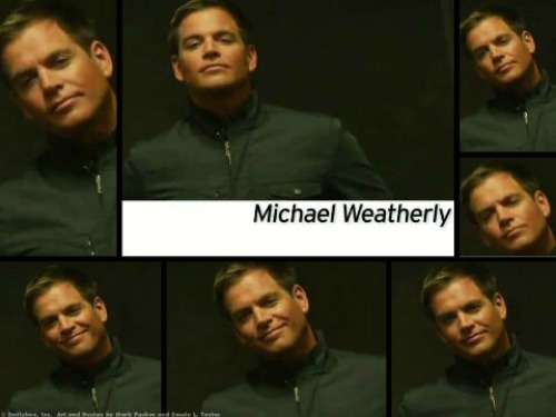 Michael weatherly for TV Guide