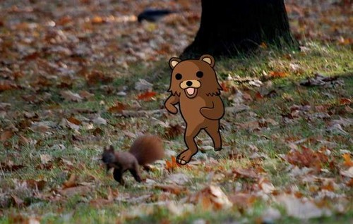 Pedobear chasing squirrel