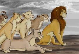 Simba and the lionesses