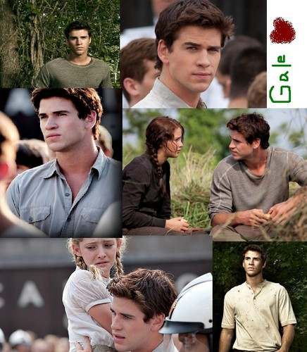 my gale collage!