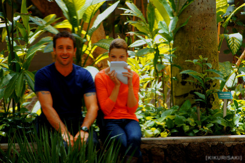 Lauren German and Alex O'Loughlin on set of Hawaii Five-0