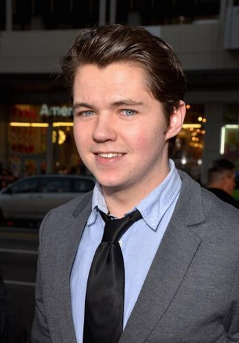 "Actor Damian McGinty arrives at the premiere of ""American Reunion"""