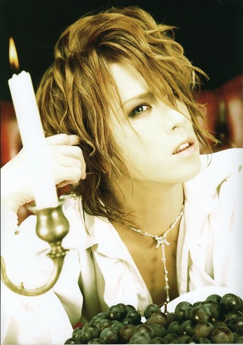 Kamijo World Official Photobook