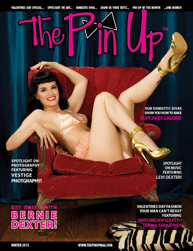 The Pin Up Covers