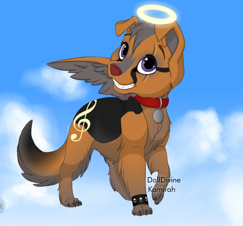 cute angel puppy
