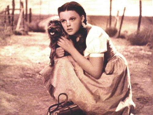 Dorothy and dear Toto