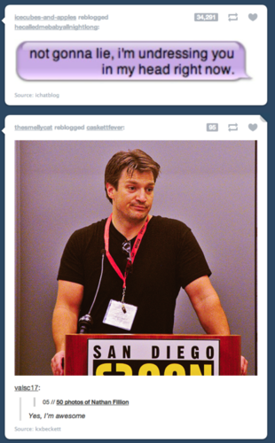 Nathan Fillion [You´re Awesome!]