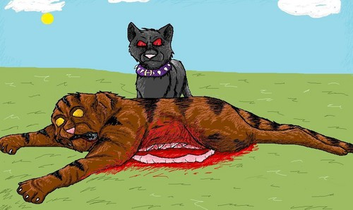 Tigerstar's death WARNING: gore,blood