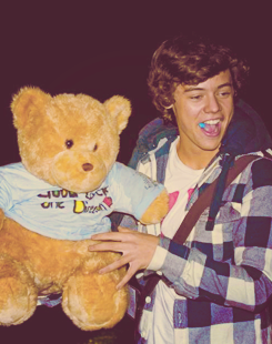 Harry Styles with teddy madala