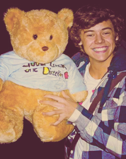 Harry Styles with teddy orso