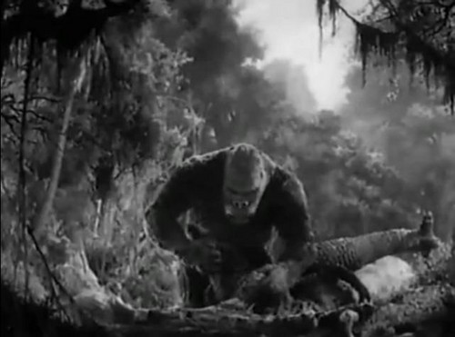 King Kong kills T-rex