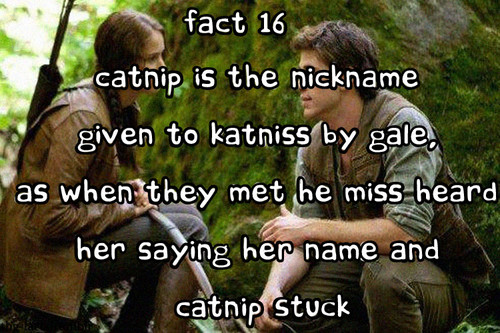 The Hunger Games facts 1-20
