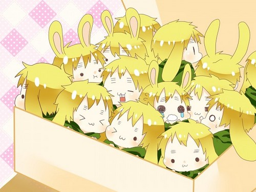 ~Box of Bunny Englands~