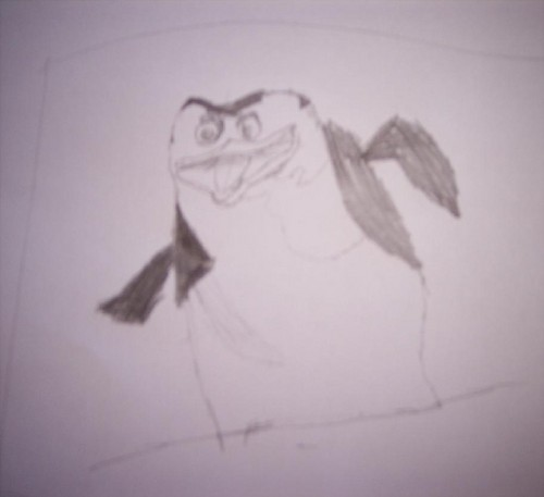 Skipper pinguin Drawing