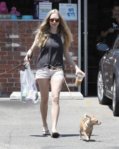 Amanda Seyfried Meets Friends At Oaks Gourmet Market [July 17]