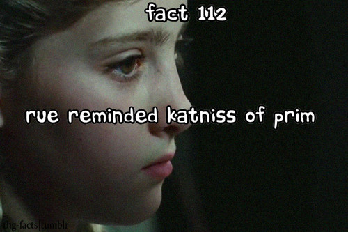 The Hunger Games facts 101-120