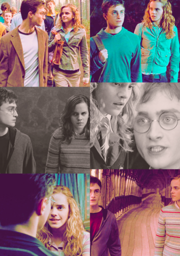 Harry & Hermione - Order of the Phoenix