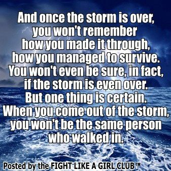 Once the Storm is Over...You Won't Be the Same