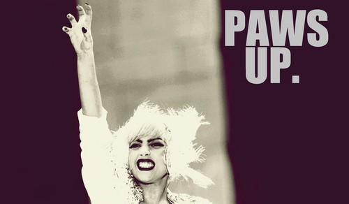 Paws up!!!!!