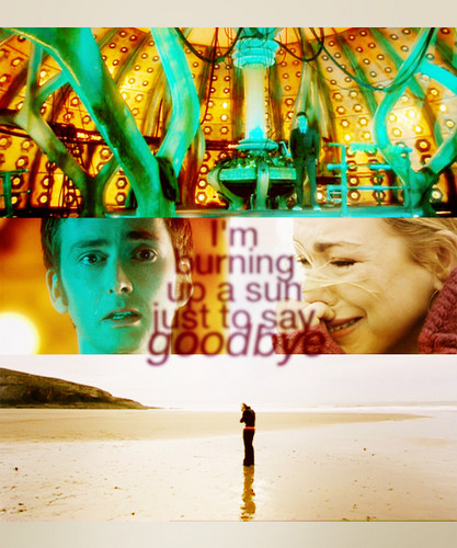The Doctor and Rose in 'Doomsday'. :(