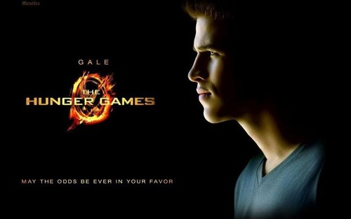 gale hungergames poster