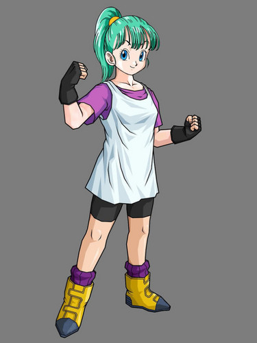 Bulma with Videl's clothes